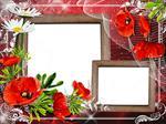 طرح-لایه-باز-قاب-عکس-و-فریم-برای-فتوشاپ-با-موضوع-گل-قرمز-red-flower-